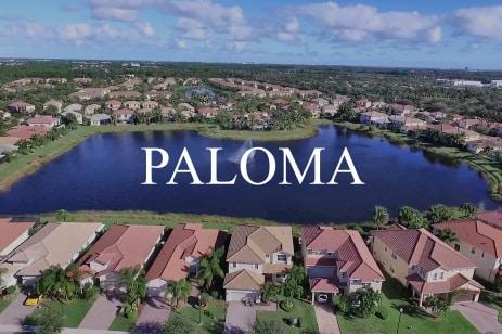 Paloma Headline